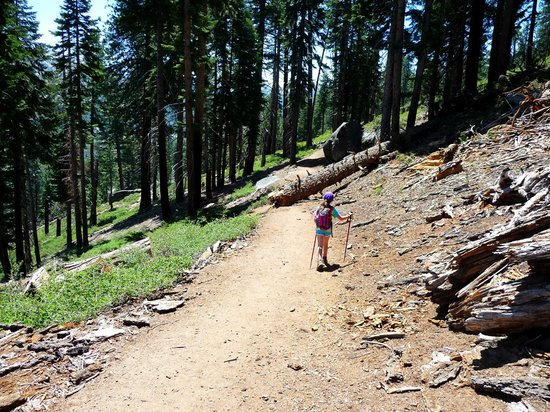 Panorama Trail: first section - from Glacier Point down to Illilouette Creek