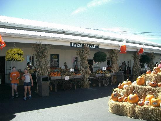 Farm Market Picture Of Huber S Orchard Winery Starlight Tripadvisor