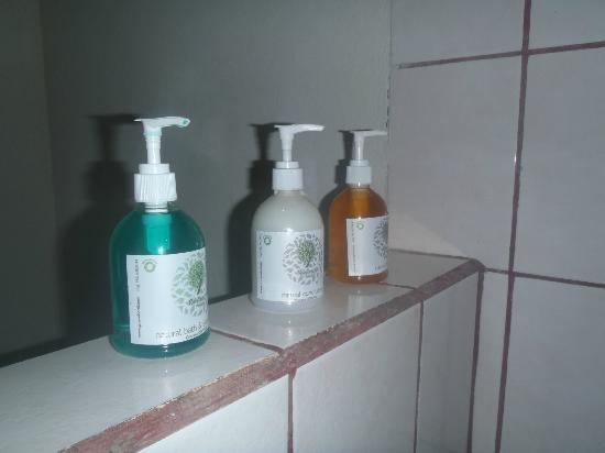 Chachagua Rainforest Eco Lodge: lodge provided shampoo, conditioner & body wash