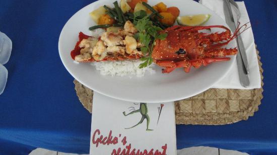 Gecko's Restaurant : Gecko menu and lobster