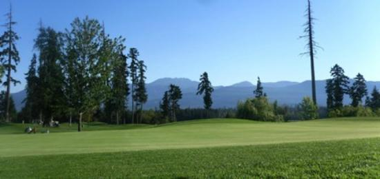 Arrowsmith Golf & Country Club: Mount Arrowsmith