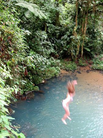 Pacific Journeys : Taking the plunge!