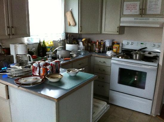 Arrivals B&B Vancouver Airport: A view of the kitchen at 7am. Care to have breakfast?
