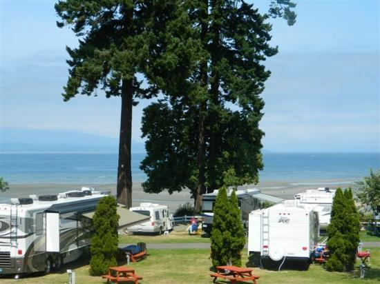 Paradise Seashell Motel: Paradise RV Park located next to Parksville beach