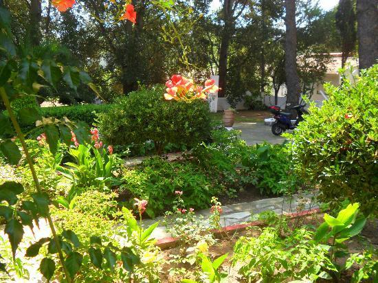 Paraschos Studios: Vialetti esterni con vegetazione