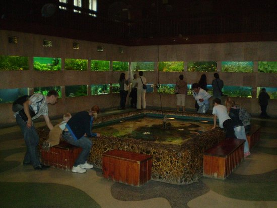 Aquarium Exhibit Hall