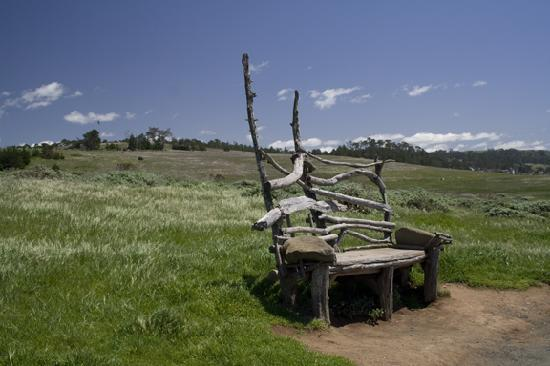 Камбрия, Калифорния: The Fiscalini Ranch Preserve has over 400 acres of forever open space...and some great benches a