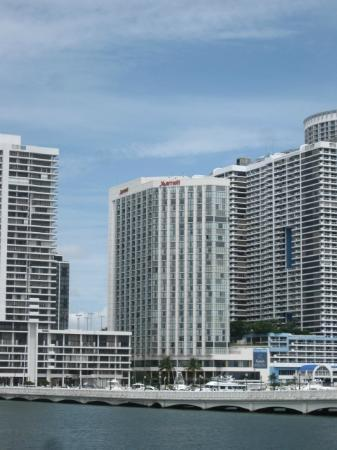 view of pool area picture of miami marriott biscayne bay. Black Bedroom Furniture Sets. Home Design Ideas