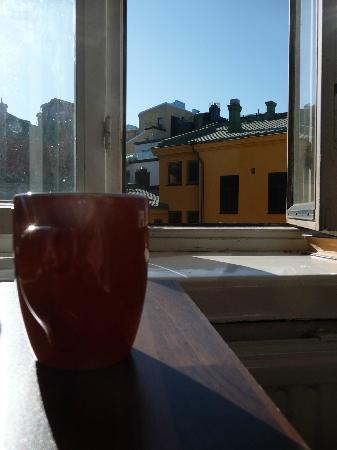 Hostel Diana Park: вид из окна кухни днем
