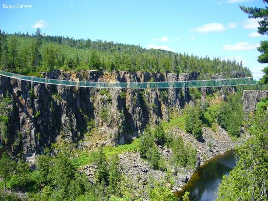 Eagle Canyon Adventures : suspension bridge
