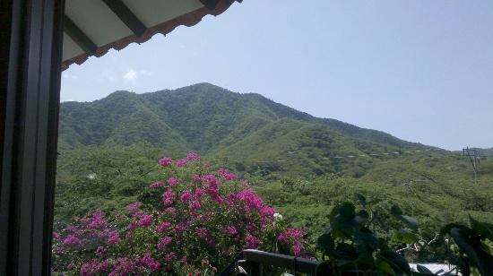La Casa Redonda : Vista al cerro desde la habitación