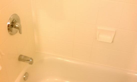 Hilton Garden Inn Myrtle Beach/Coastal Grand Mall: shower