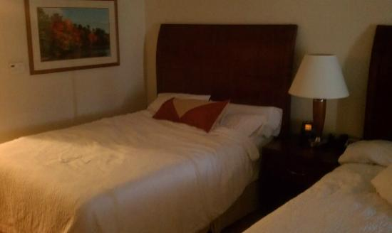 Hilton Garden Inn Myrtle Beach/Coastal Grand Mall: queen bed