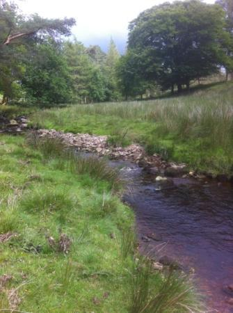 Ланкастер, UK: stream that runs through the Trough of Bowland