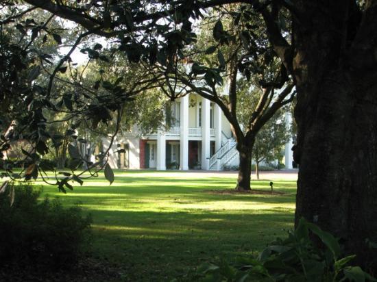 Bocage Plantation : Frontyard
