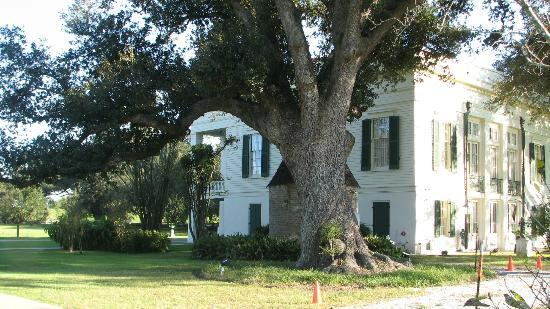 Bocage Plantation: Side yard
