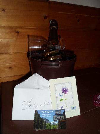 Timber Ridge Lodge: Anniversary gift from owner of timber view lodge 7/4/12