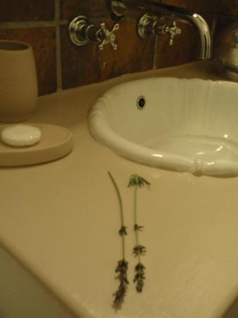 Gooding's Groves Olive Farm & Guest House: Bathroom