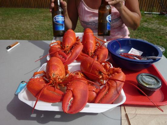 Carrier's Mainely Lobster: 2 DS1 Dinners!