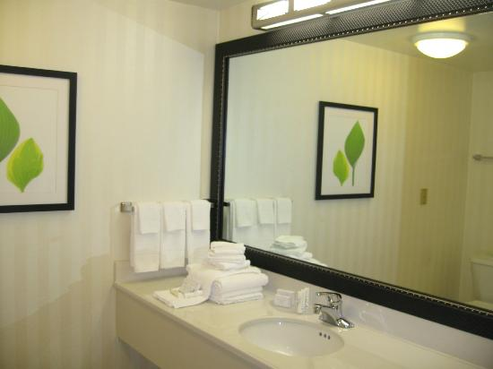 Fairfield Inn & Suites Pittsburgh New Stanton: Spacious and Well Lit Bathroom in the King Suite Room
