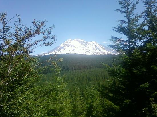 Gifford Pinchot National Forest: mountain views