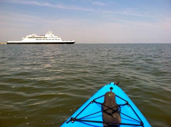 East of Maui: Cape May Ferry