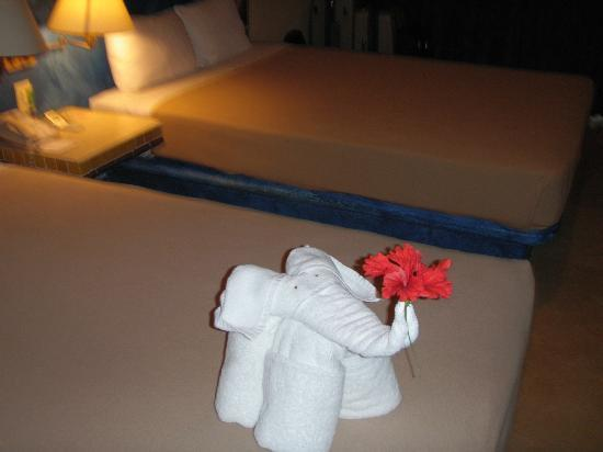 Viva Wyndham Azteca: Our room with a cute elephant