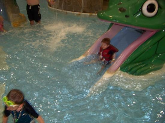Castle Rock Resort & Waterpark: plenty of little slides