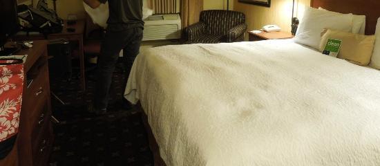 Hampton Inn & Suites Denver-Speer Boulevard: Small room