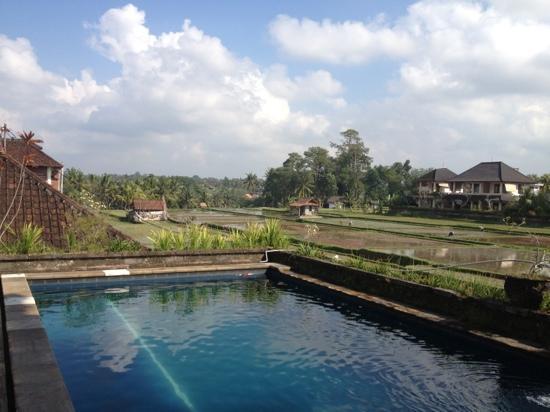 Ina Inn Bungalows: piscine sur le toit