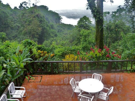 Samasati Retreat & Rainforest Sanctuary: View from the dining area