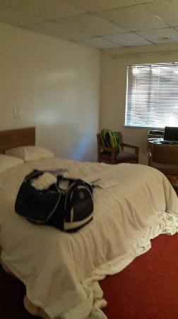 Tomac Motor Inn: My room, kingsize bed