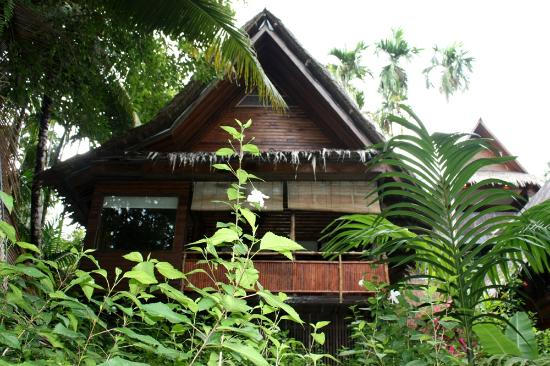 Palau Plantation Resort: View of our cottage from the jungle side