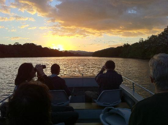 Daintree Boatman Nature Tours: Sunset with the Boatman
