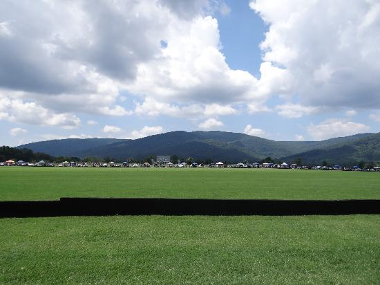 King Family Vineyards : view from picnic at polo match