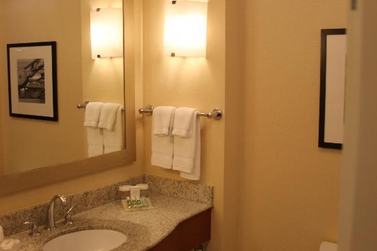 Hilton Garden Inn Portsmouth Downtown: Bathroom