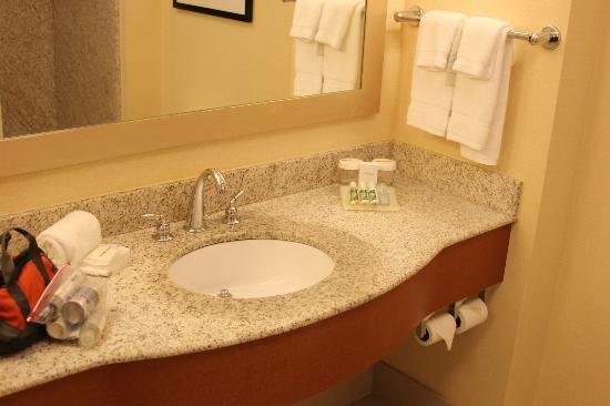 Hilton Garden Inn Portsmouth Downtown: Bathroom