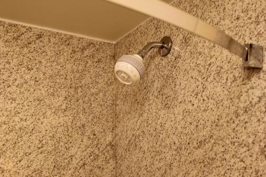Hilton Garden Inn Portsmouth Downtown: Showerhead