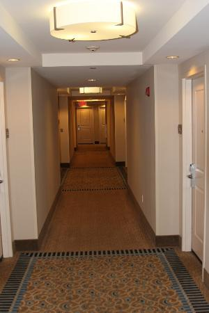 Hilton Garden Inn Portsmouth Downtown: 2nd floor hallway