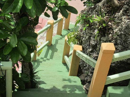 Pimento Lodge Resort : Steps going down to the pool.