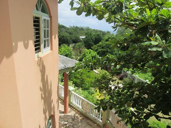 Pimento Lodge Resort: Pimento Lodge.