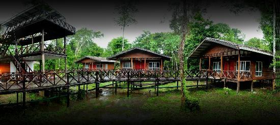 Panorama View of Borneo Nature Lodge