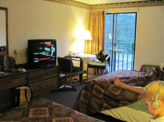 Mariner Motor Lodge: overall room