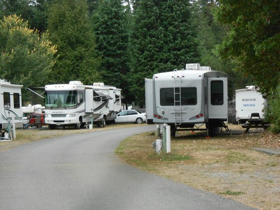 Redwood Meadows RV Resort: Pull through sites