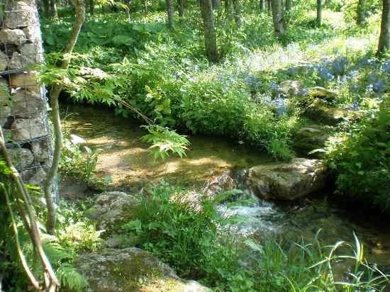 Tokachi Millenium Forest