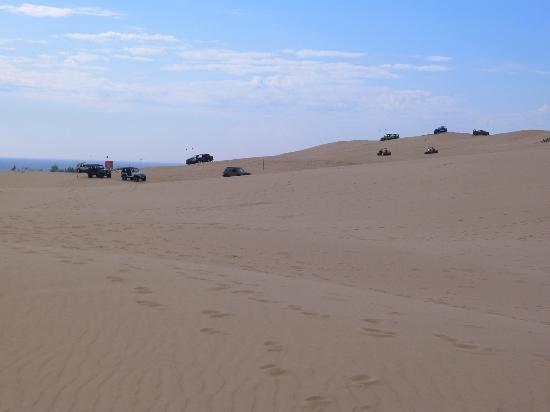 Silver Lake Sand Dunes: Dune vehicles running up and down the sides of the dunes