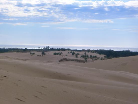 Silver Lake Sand Dunes: Viewing Lake Michigan in the distance