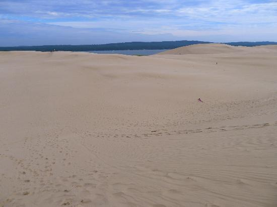 Silver Lake Sand Dunes: Silver Lake is trapped behind the towering dunes