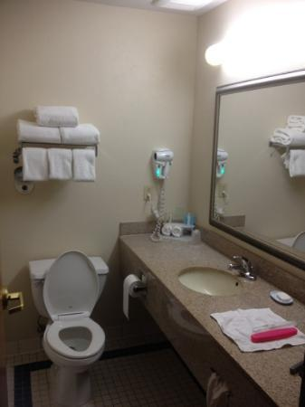 Holiday Inn Express La Porte: bathroom