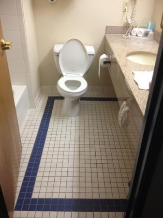Comfort Inn La Porte: bathroom floor